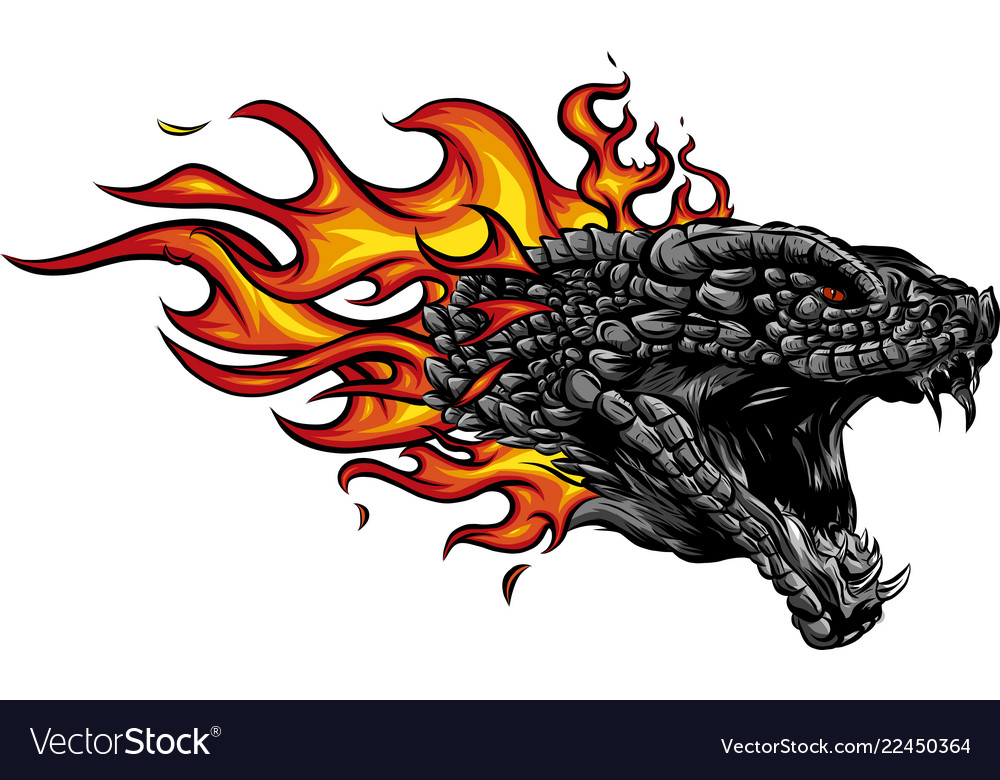A head of the dragon in fire with flames