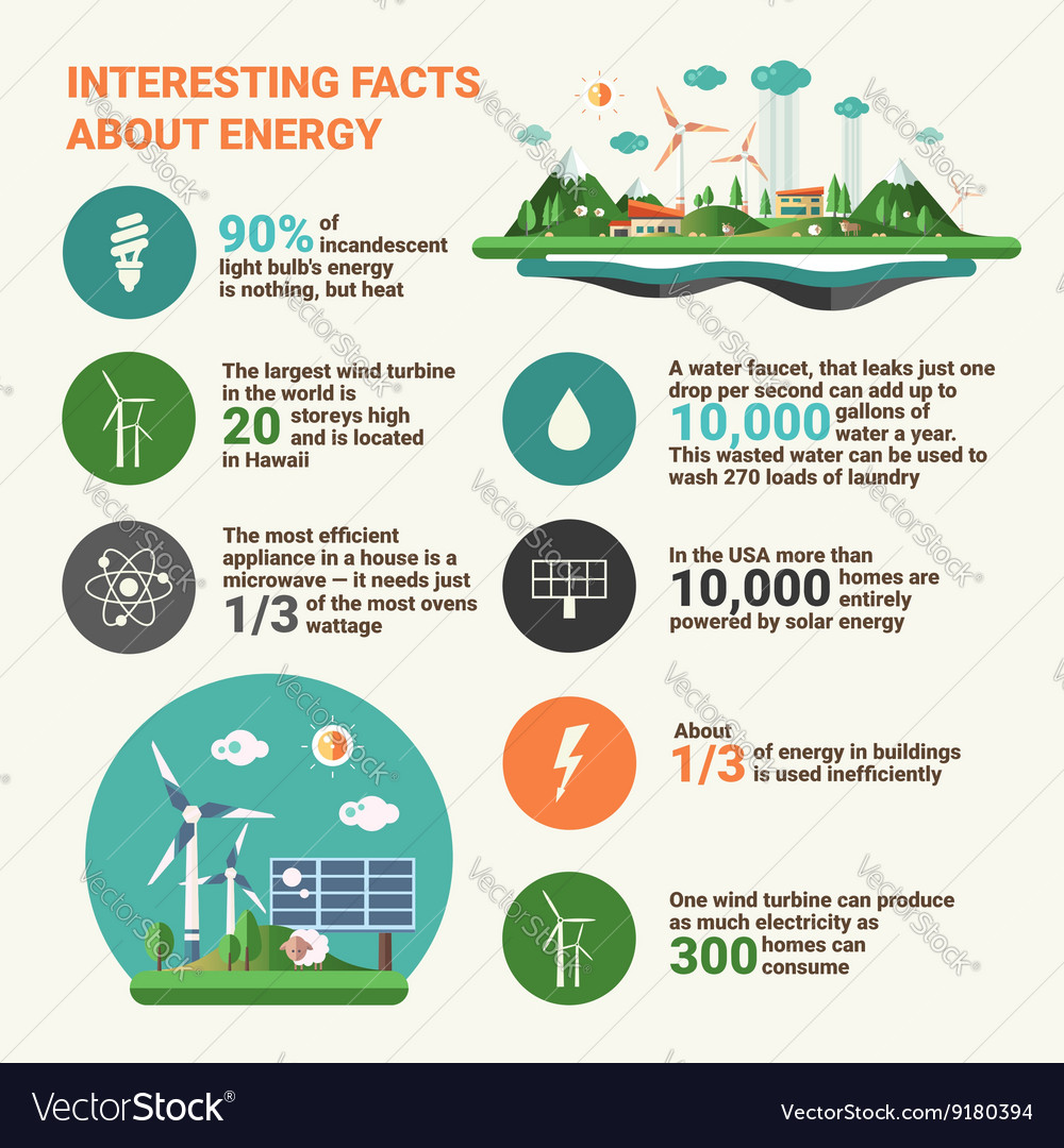 Ecology facts - infographics educational poster