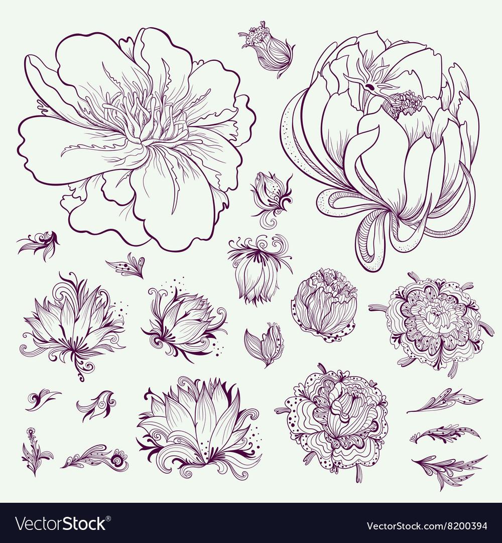 Outline Flowers Sketch Set