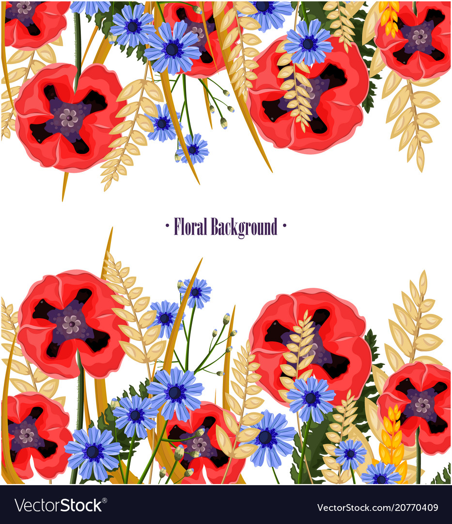 Poppy flowers card floral background