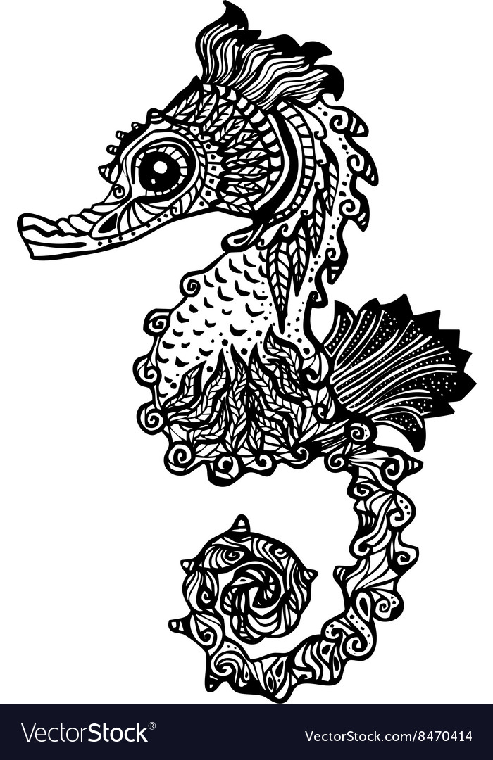 Hand drawn sea horse zentangle style vector image