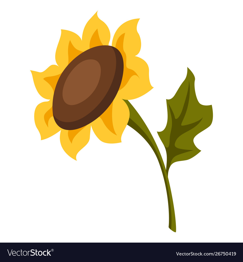 Cartoon ripe sunflower