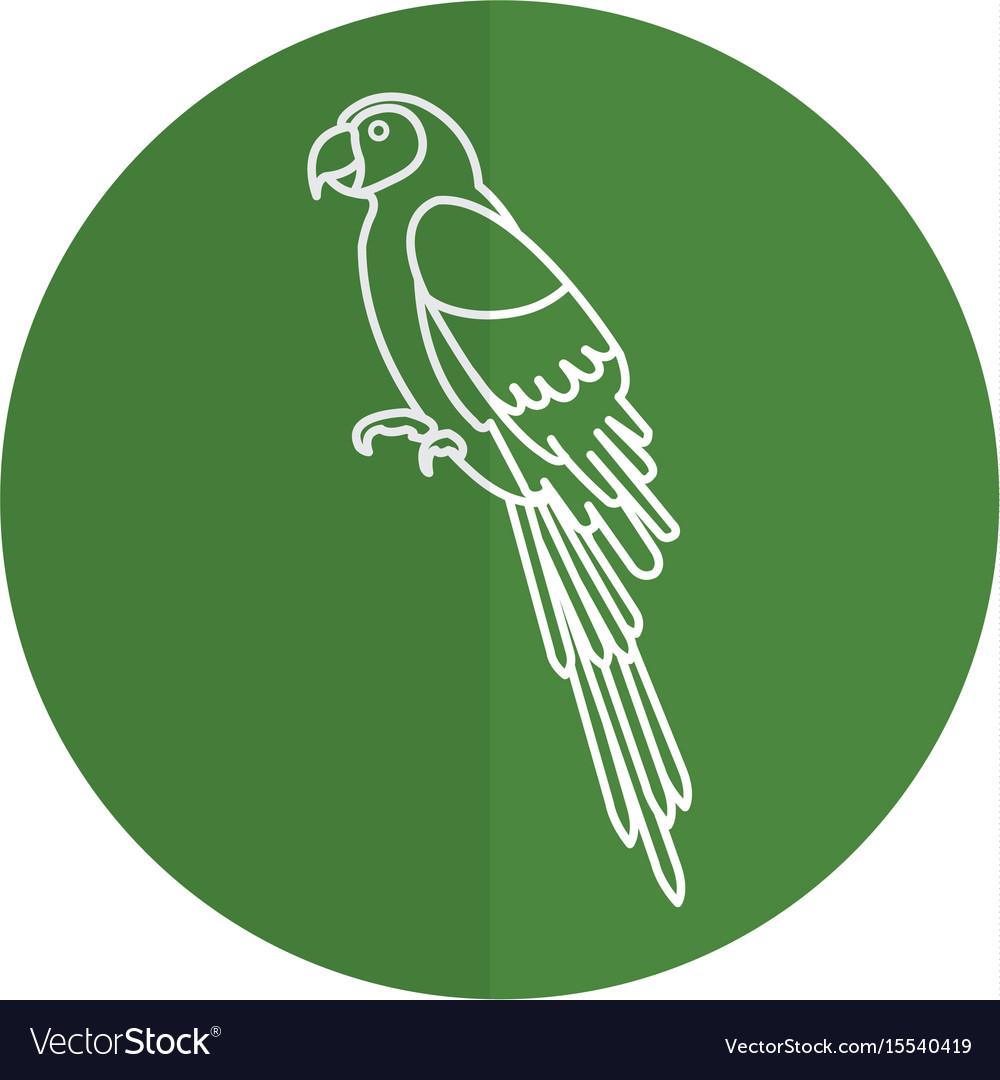 Exotic parrot tropical bird