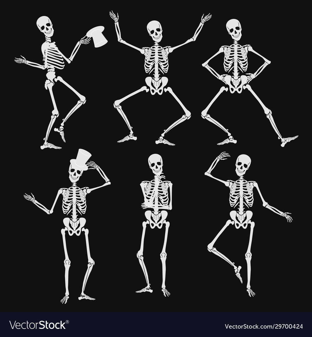 Homan skeletons silhouettes in different poses