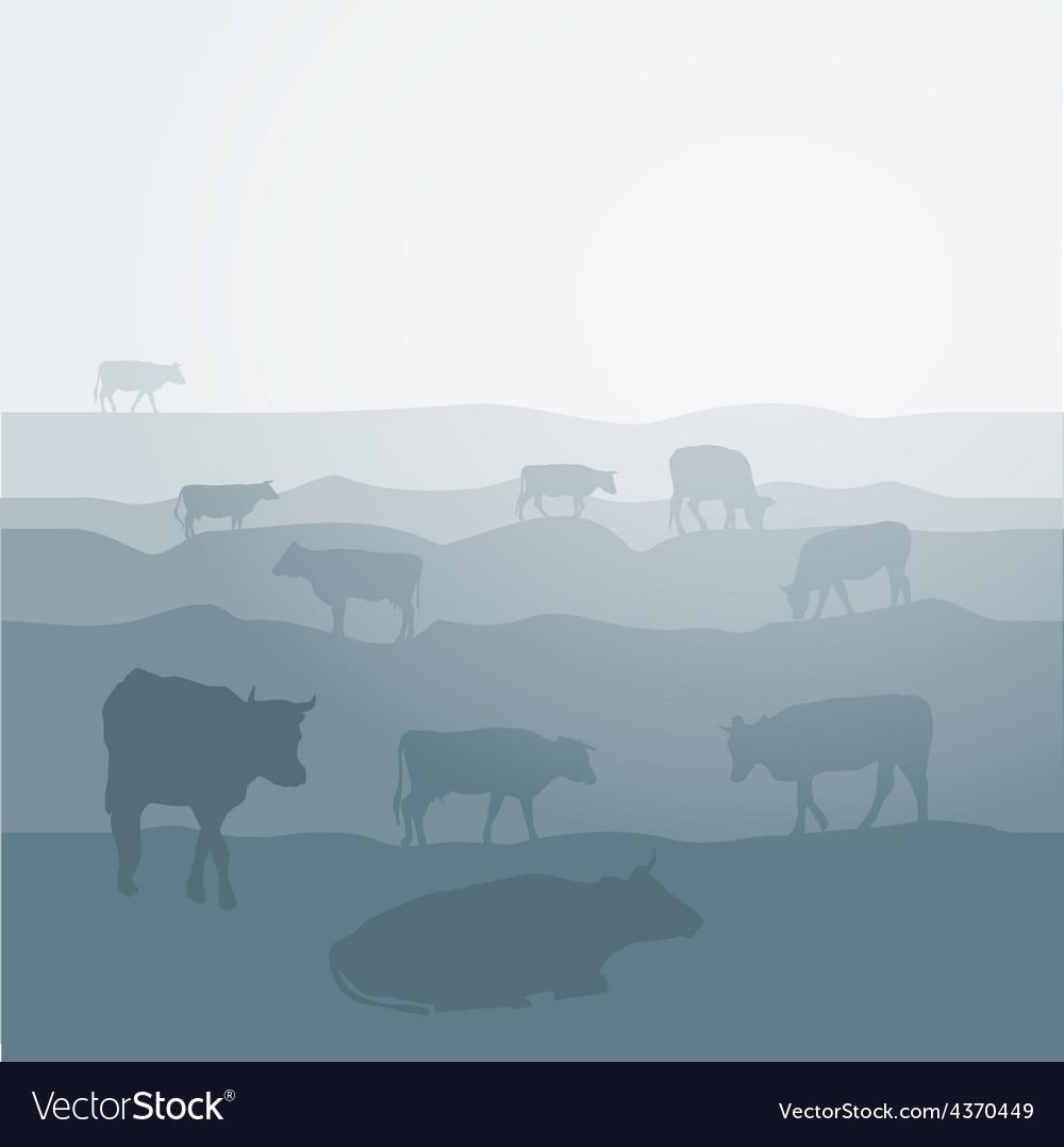 Cows graze in the field landscape sky grass vector image