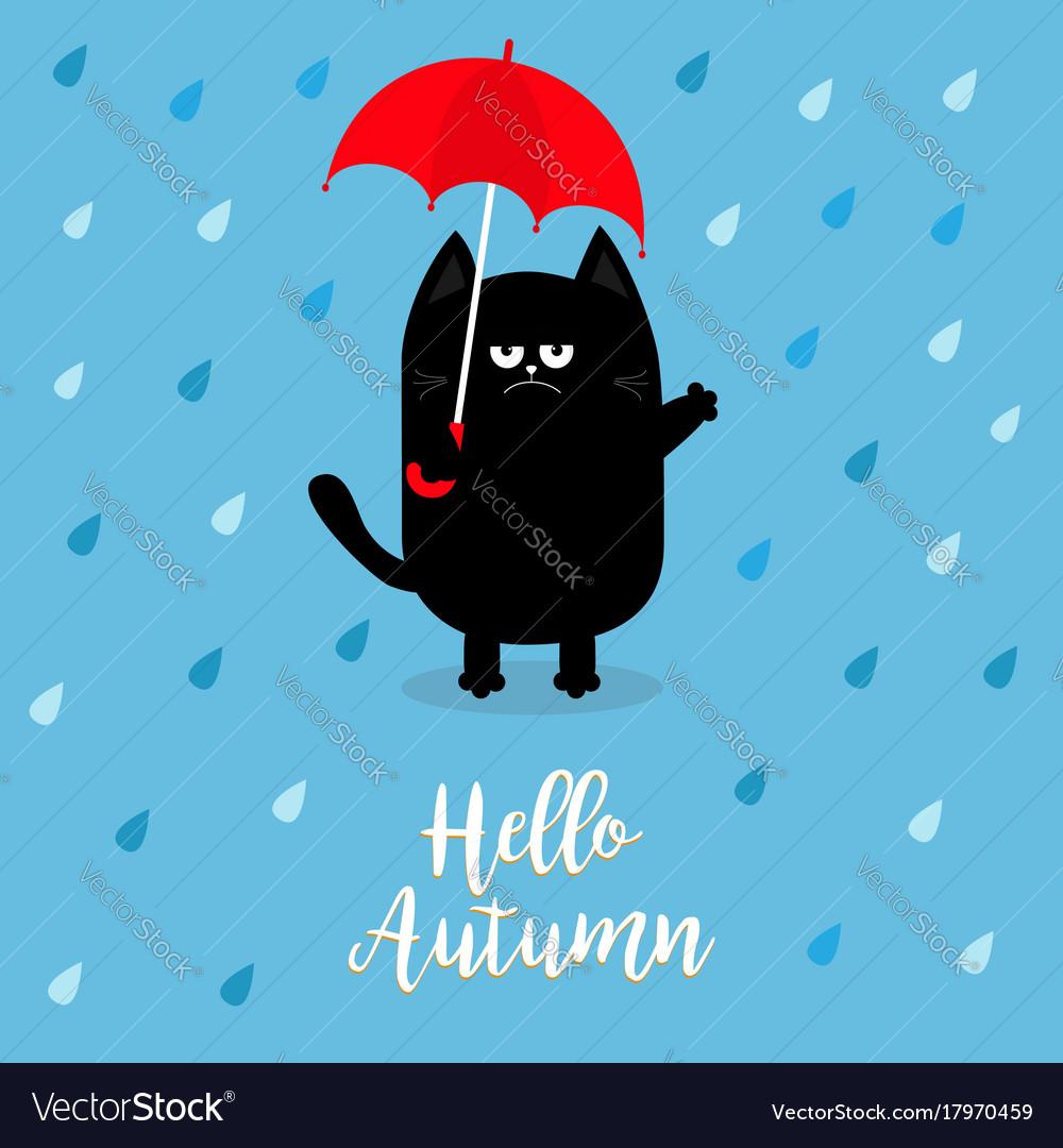 Hello autumn black cat holding red umbrella rain vector image