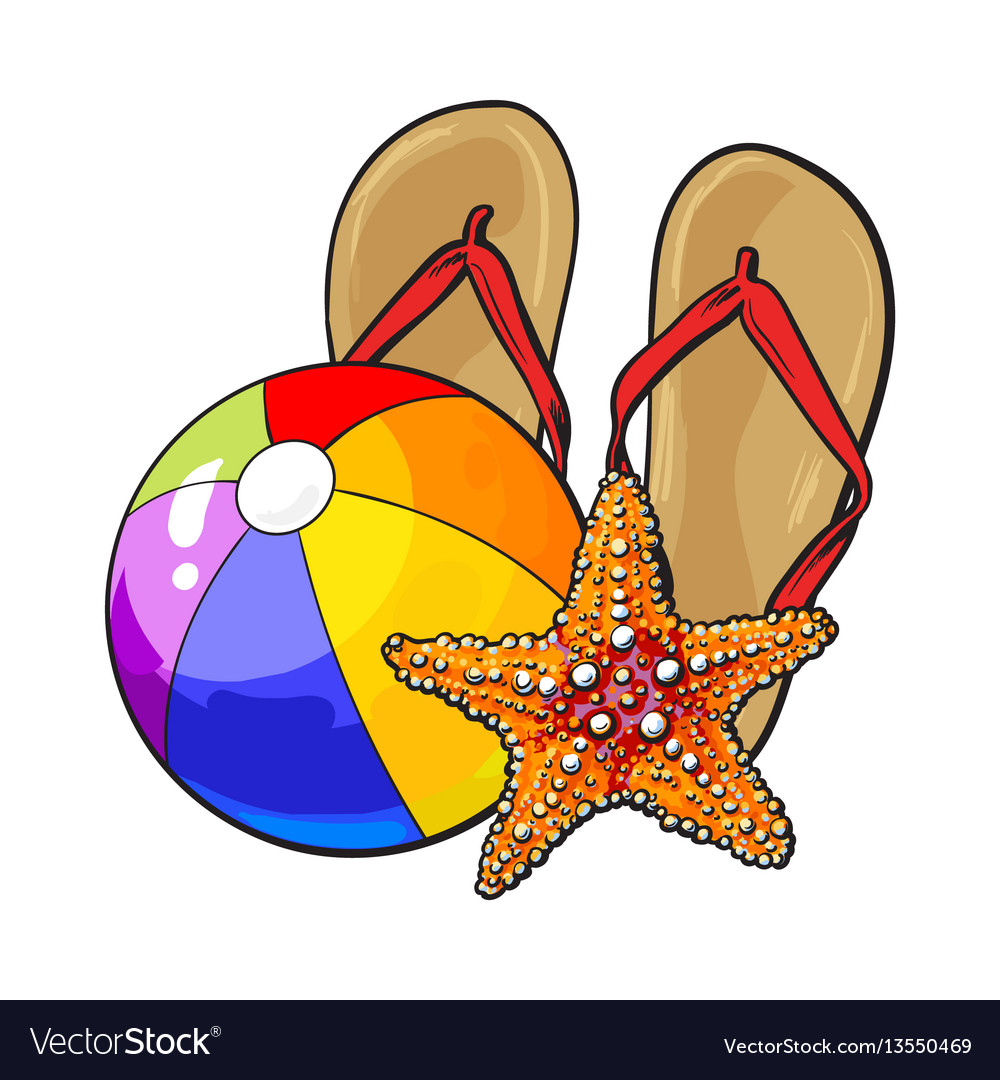 366874a6ced7 Flip flops starfish and inflatable beach ball Vector Image
