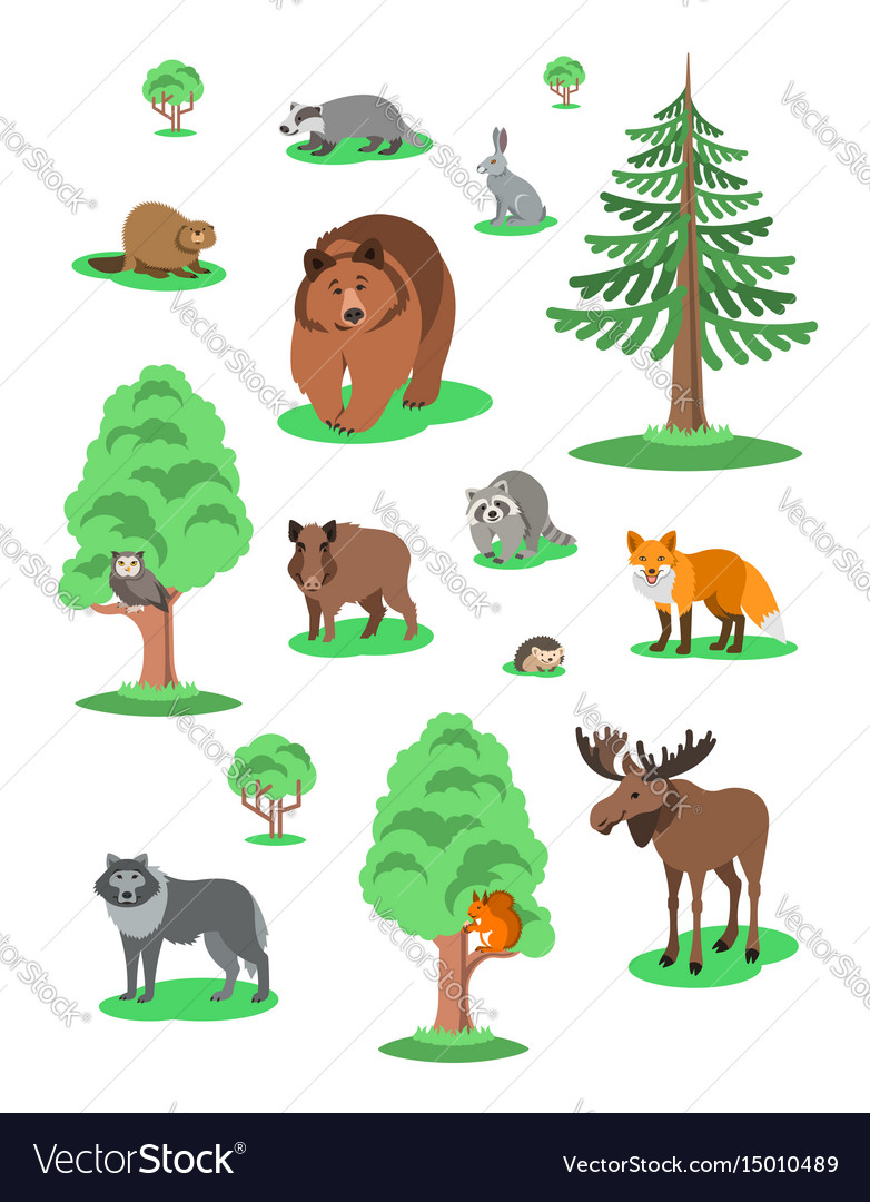 Cute forest animals kids cartoon vector image