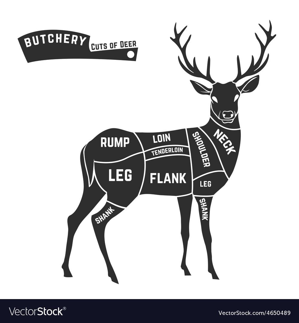 Deer Cuts Diagram - Residential Electrical Symbols •