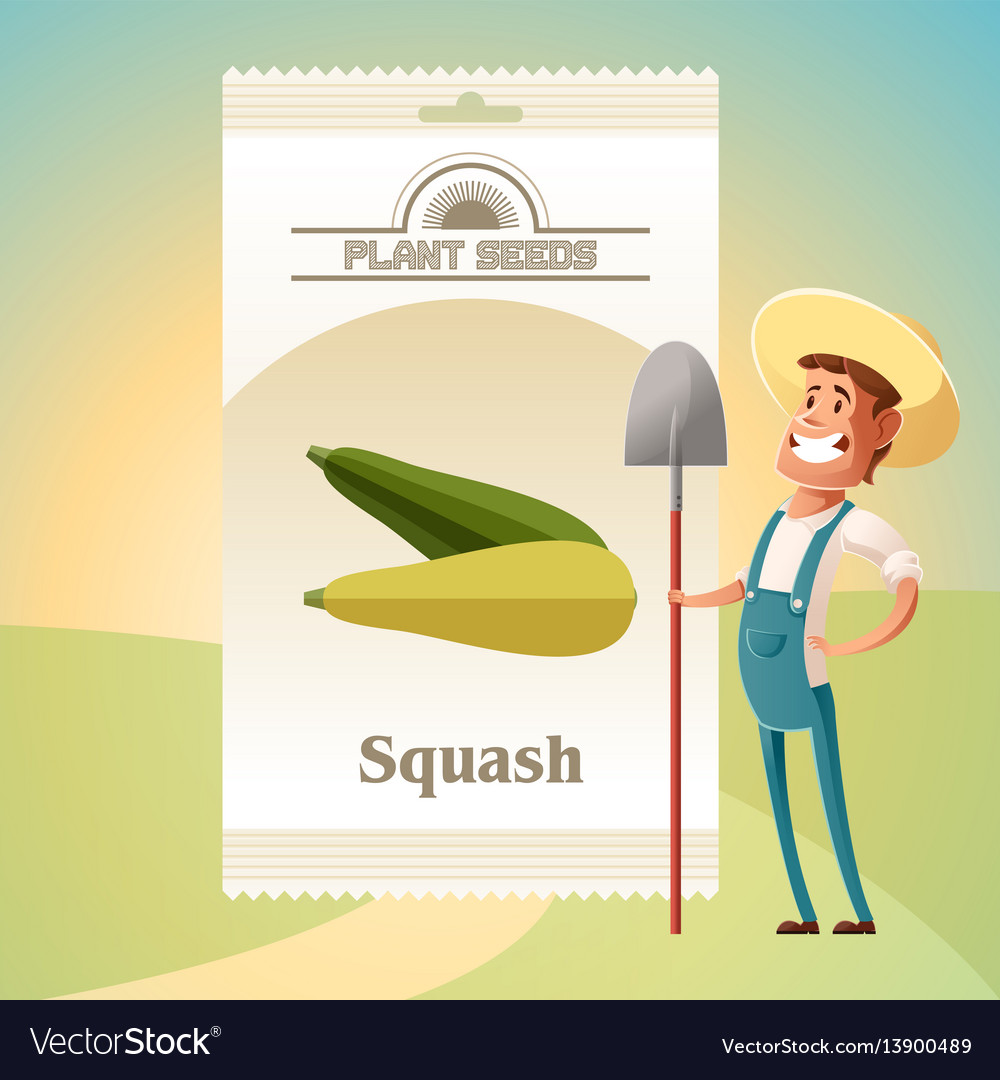 Pack of squash seeds icon