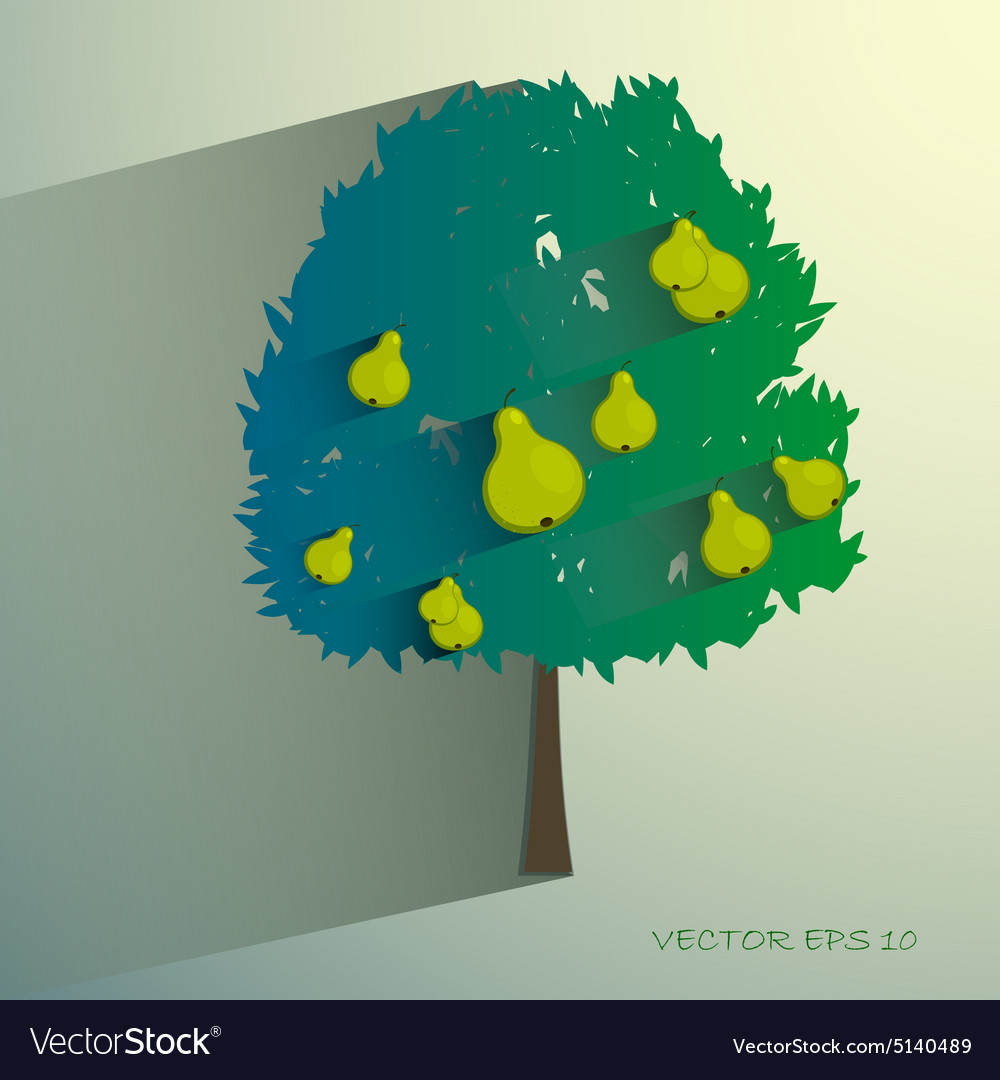 Pear tree isolated on light background