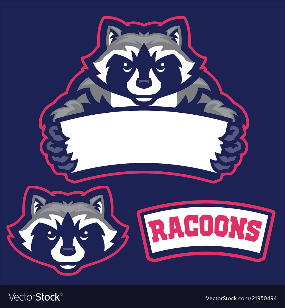 Raccoon in sport mascot style hold the blank