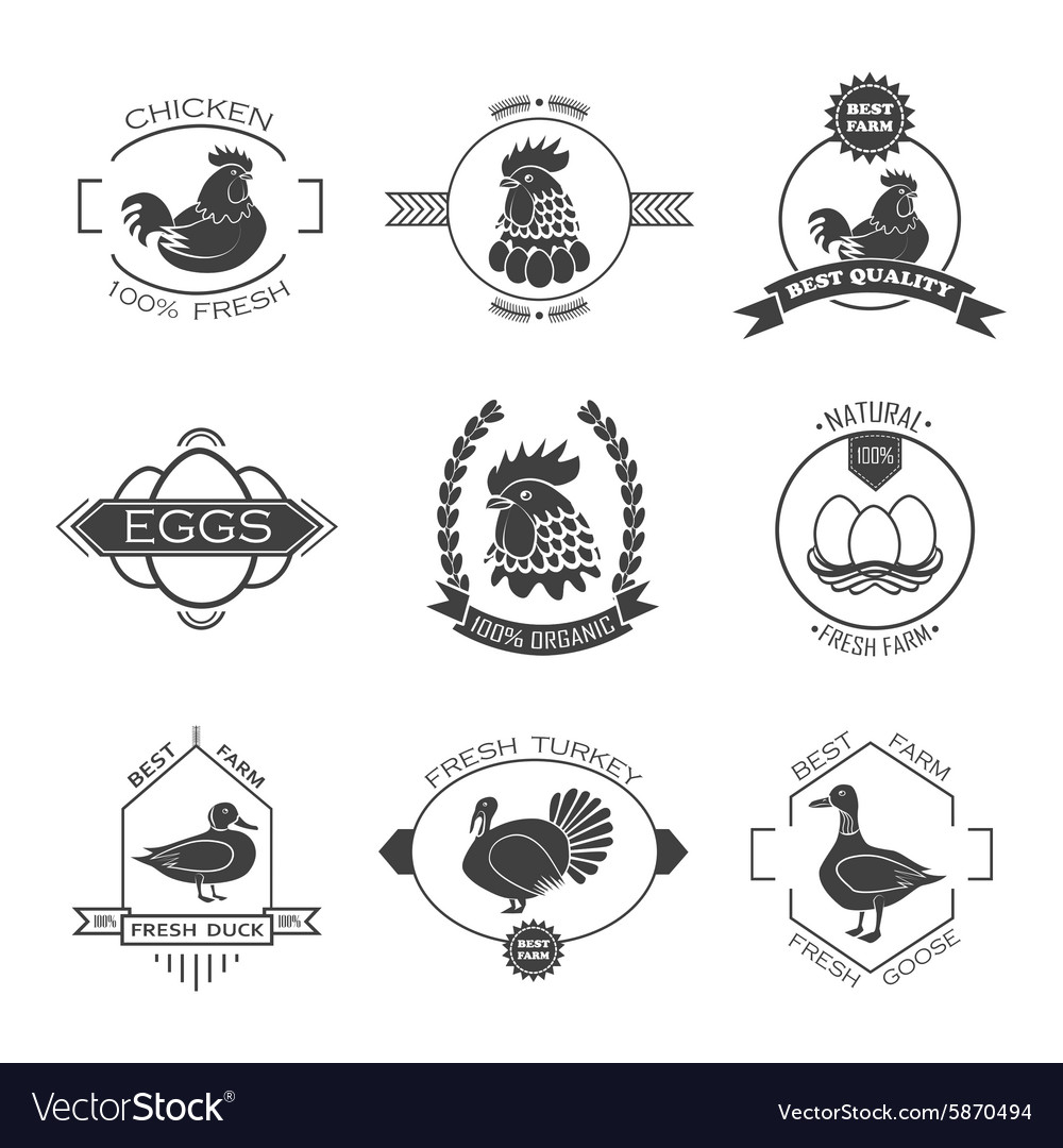 Set of poultry farm logo emblem Chicken turkey