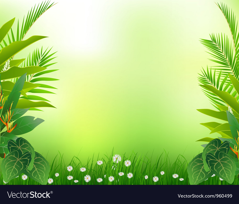 Beautiful Tropical Forest Background Royalty Free Vector