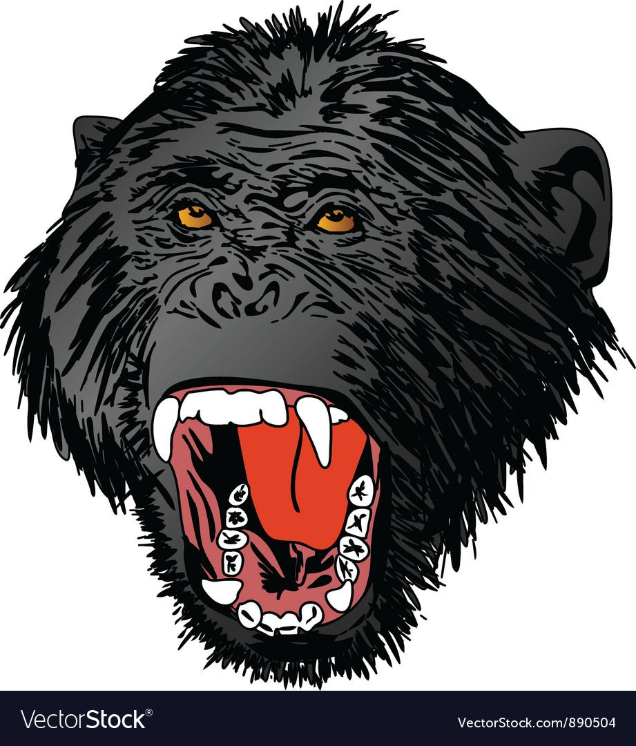 Angry ape monkey gorilla