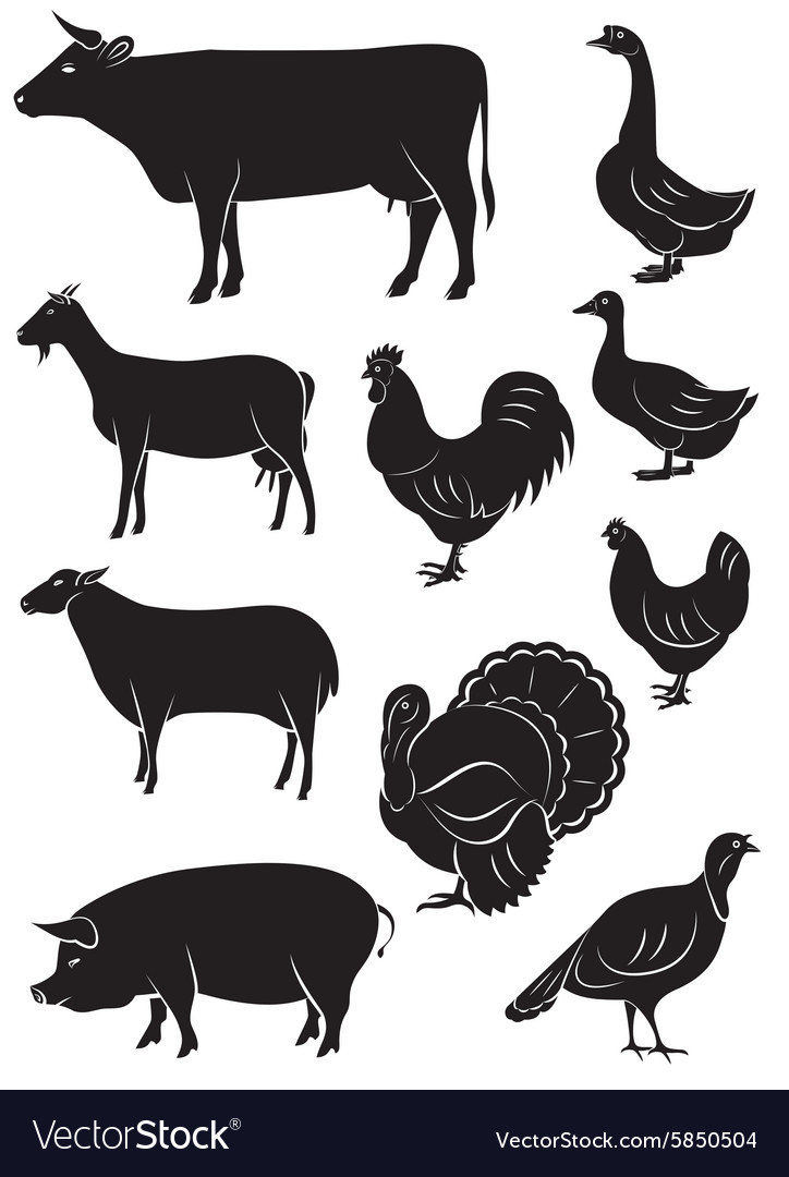 Set icons with farm animals and birds vector image
