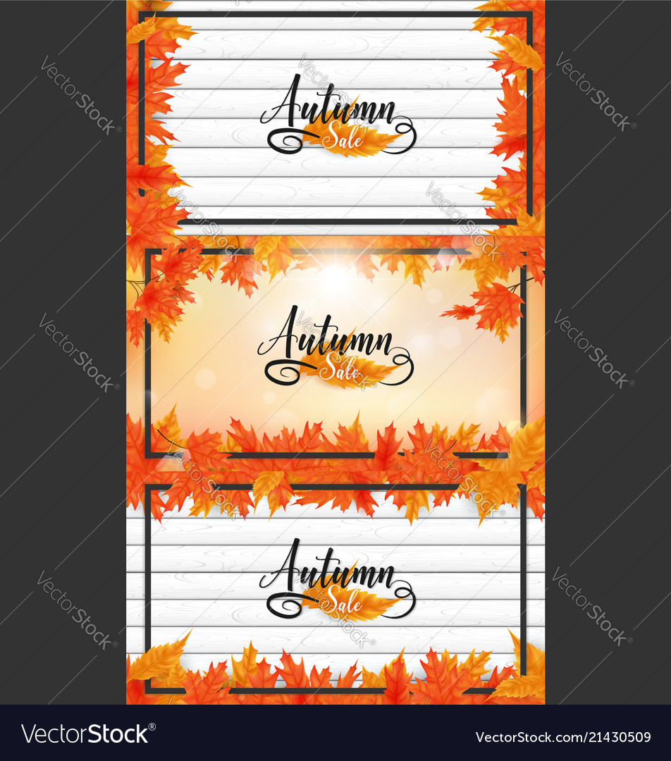 Fall or autumn background
