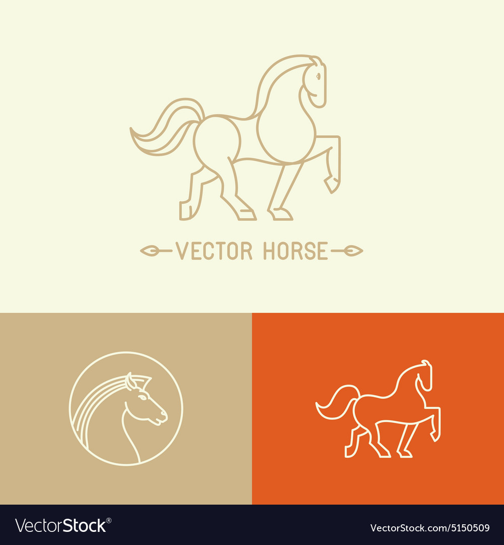 Horse logo template in trendy linear style vector image