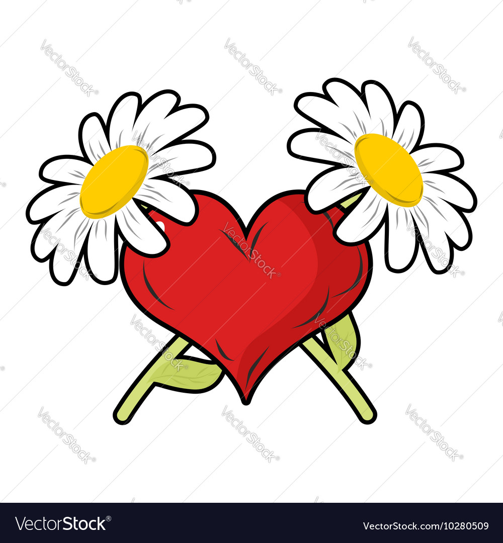 Red heart and crossbones flowers Chamomile and