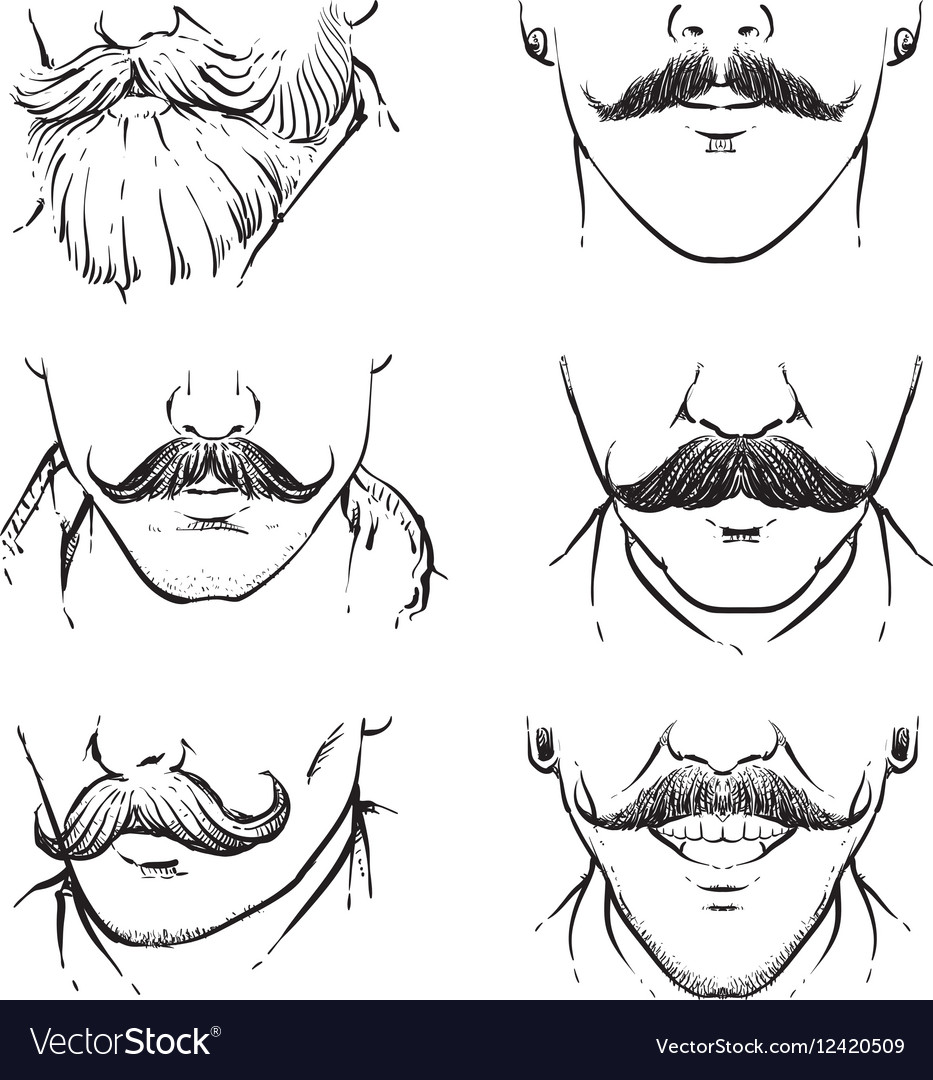 Set of hipster mustache outline drawing mustache vector image