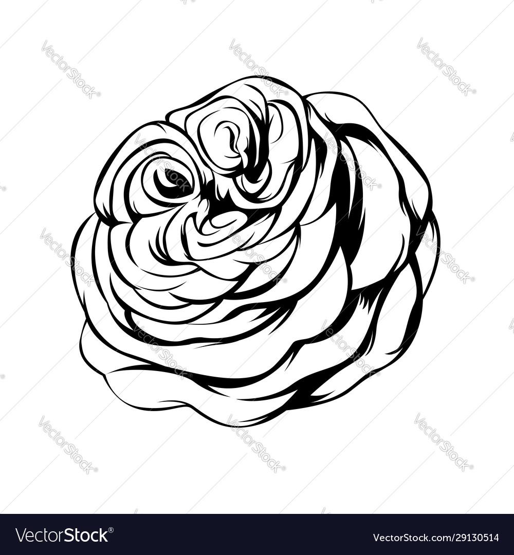 Big rose line art tattoo