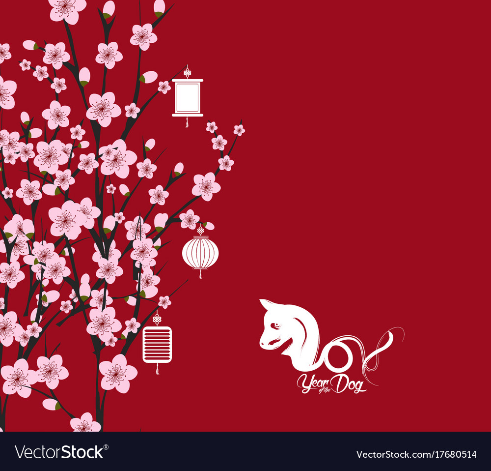 traditional chinese new year blossom background vector image
