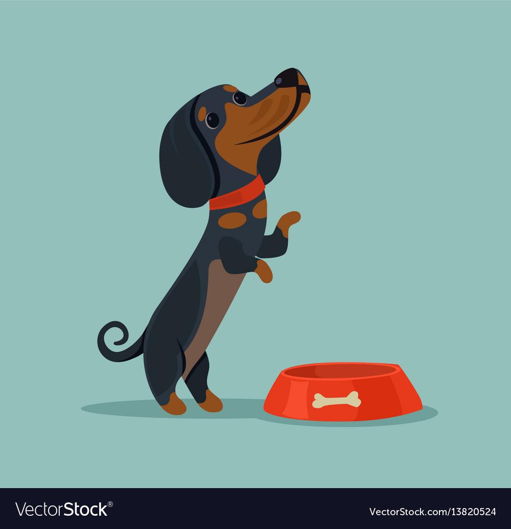 Little cute dog character mascot want eat