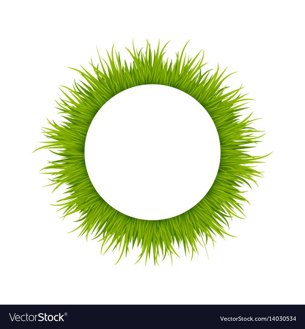 Green grass round frame vector image