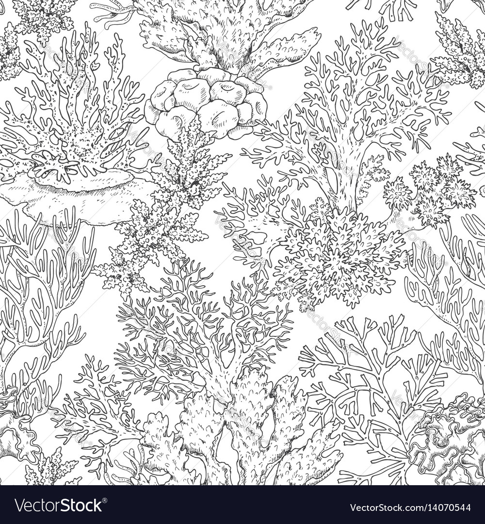 Seamless pattern with corals vector image
