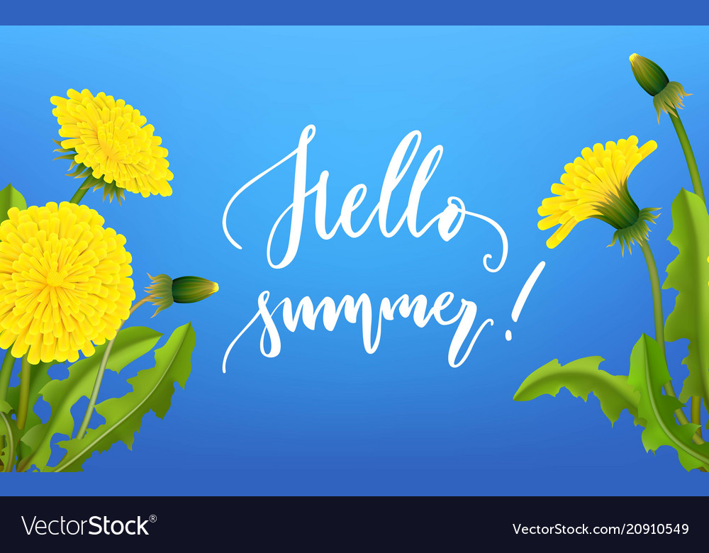 Greeting card hello summer dandelion background