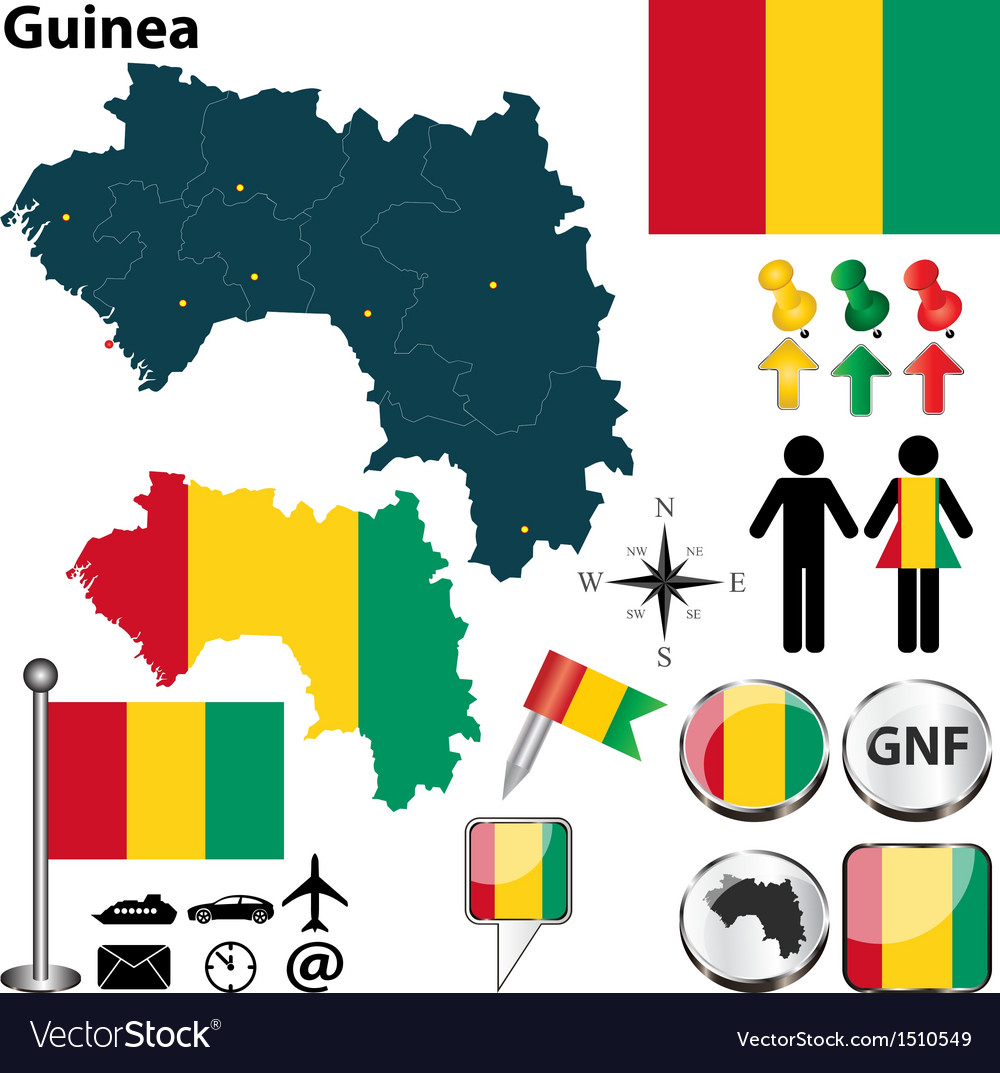 Guinea map vector image