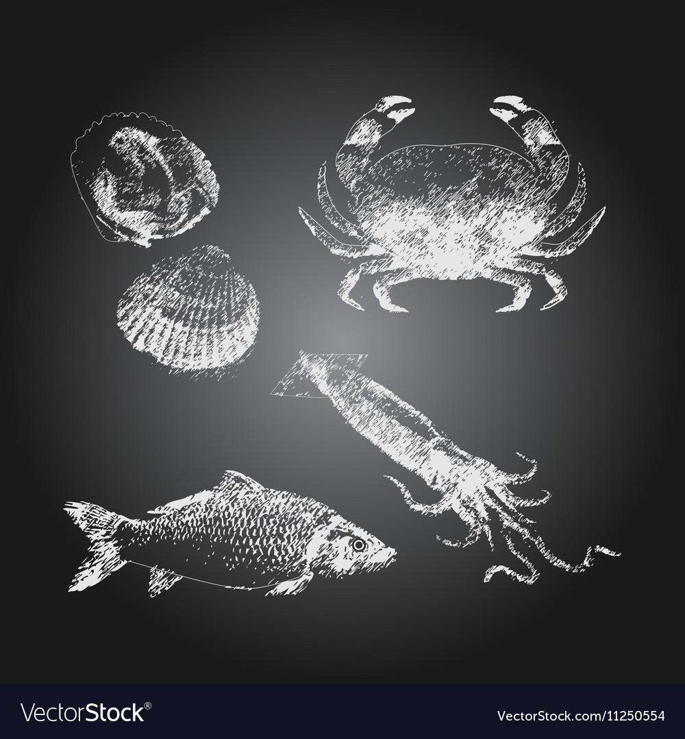 Seafood chalkboard drawing sketch set