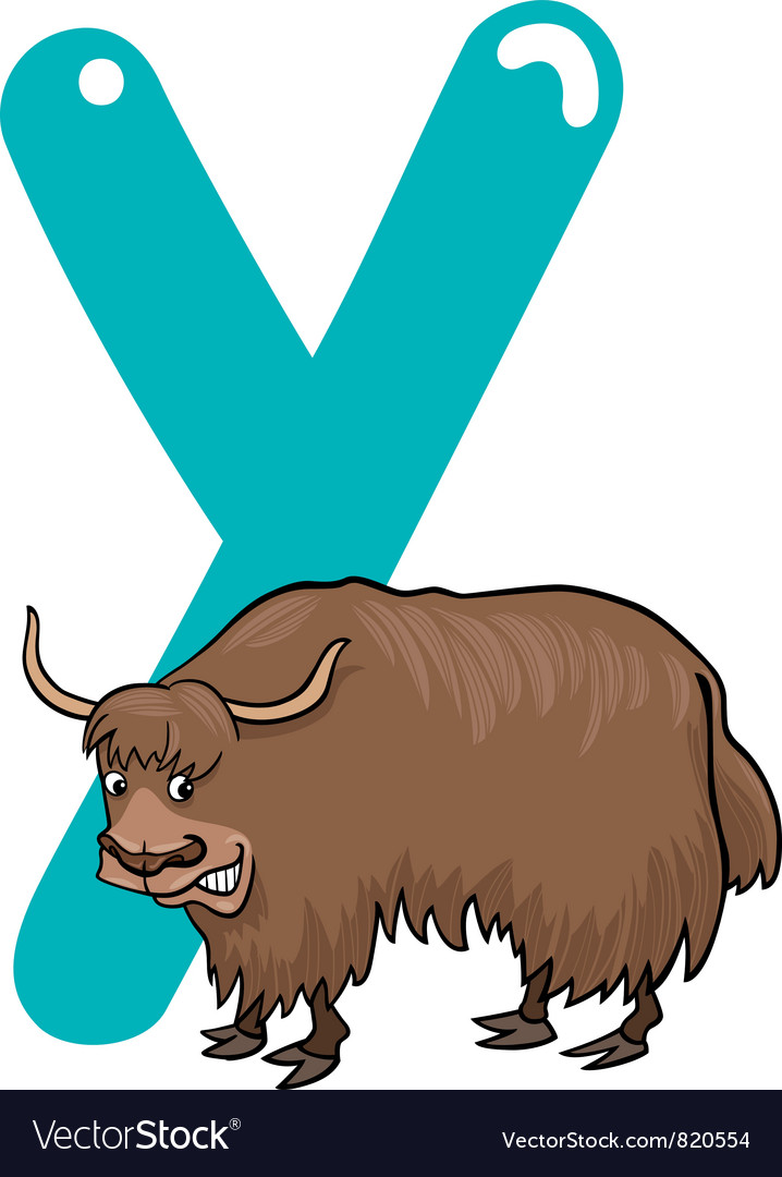 Y for yak vector image