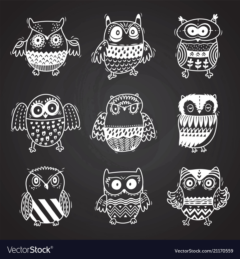 Cartoon owls in chalkboard background