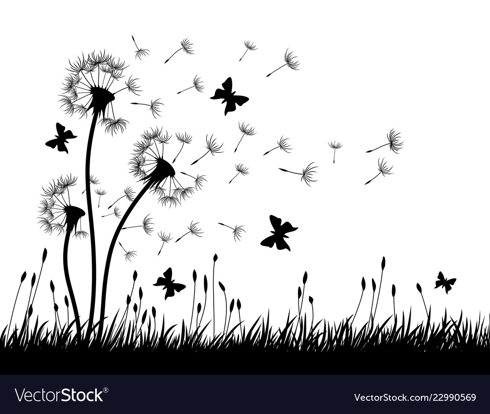 Dandelions with butterflies
