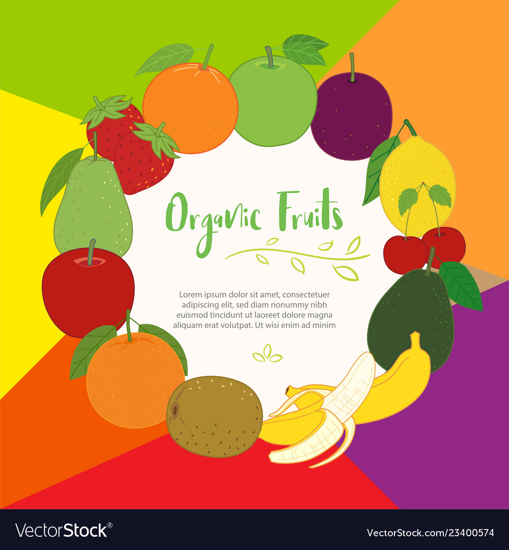 Fruits cute banner background template with copy