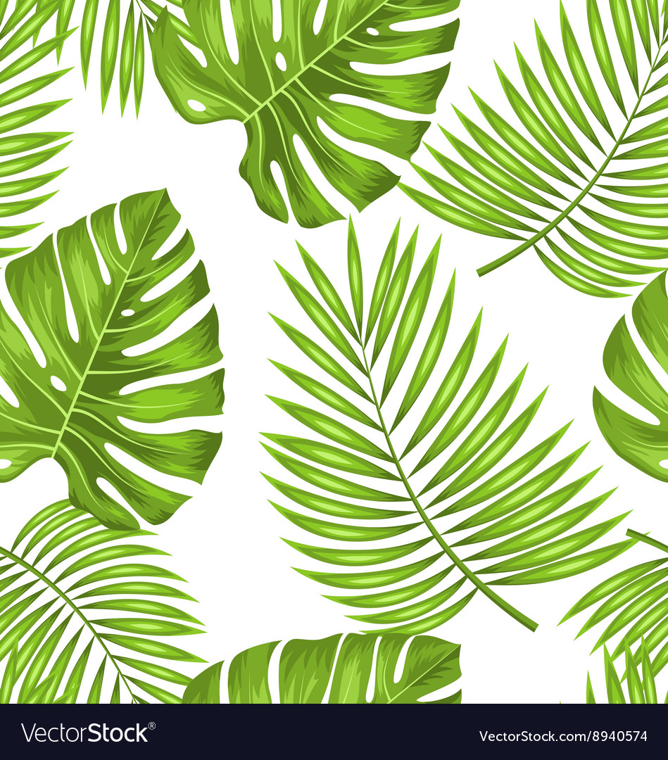 Seamless Wallpaper With Green Tropical Leaves Vector Image You can also upload and share your favorite green tropical leaves recent wallpapers by our community. vectorstock