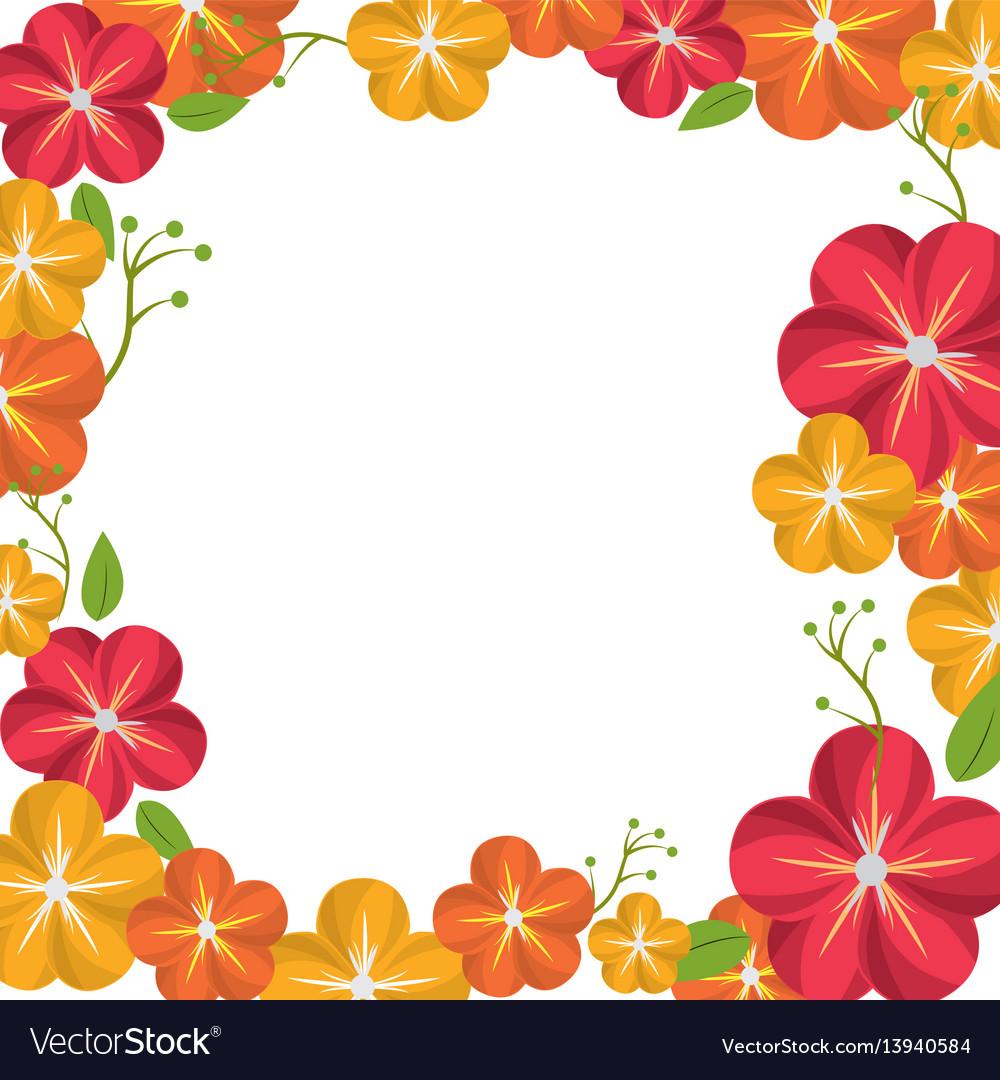 Beautiful natural flowers decoration design vector image izmirmasajfo
