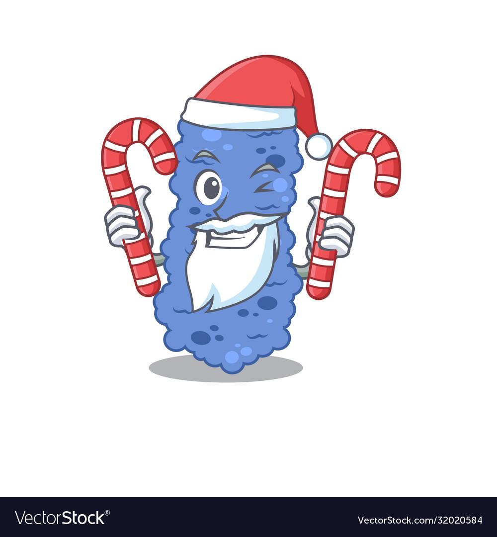 Friendly burkholderia bacteria in santa cartoon
