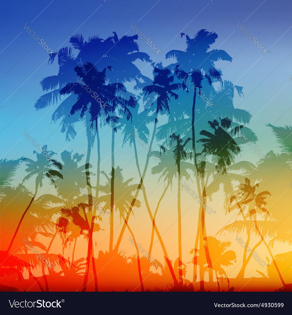 Palms silhouettes tropical sunset