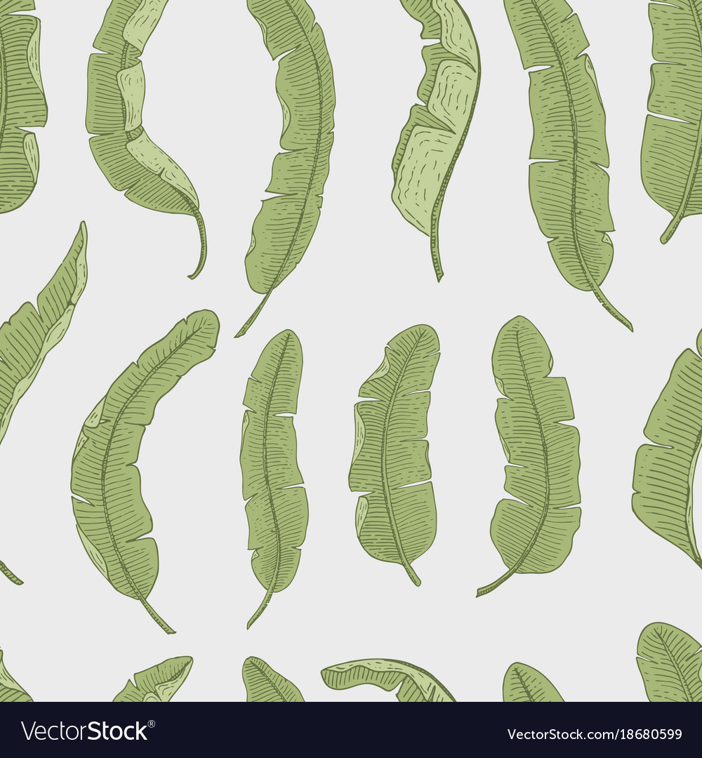 Tropical or exotic leaves seamless pattern leaf