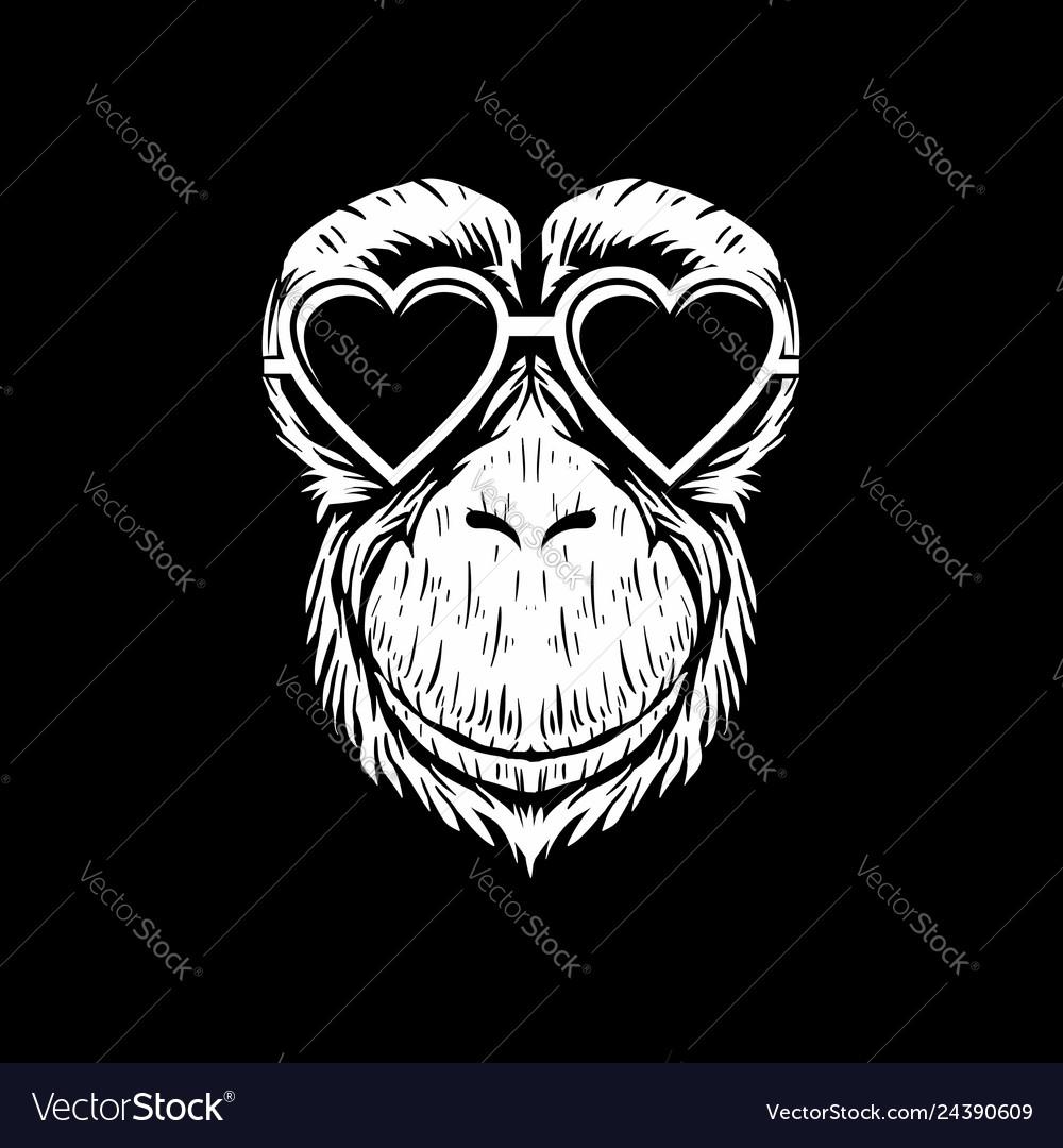 Chimpanzee eyeglasses