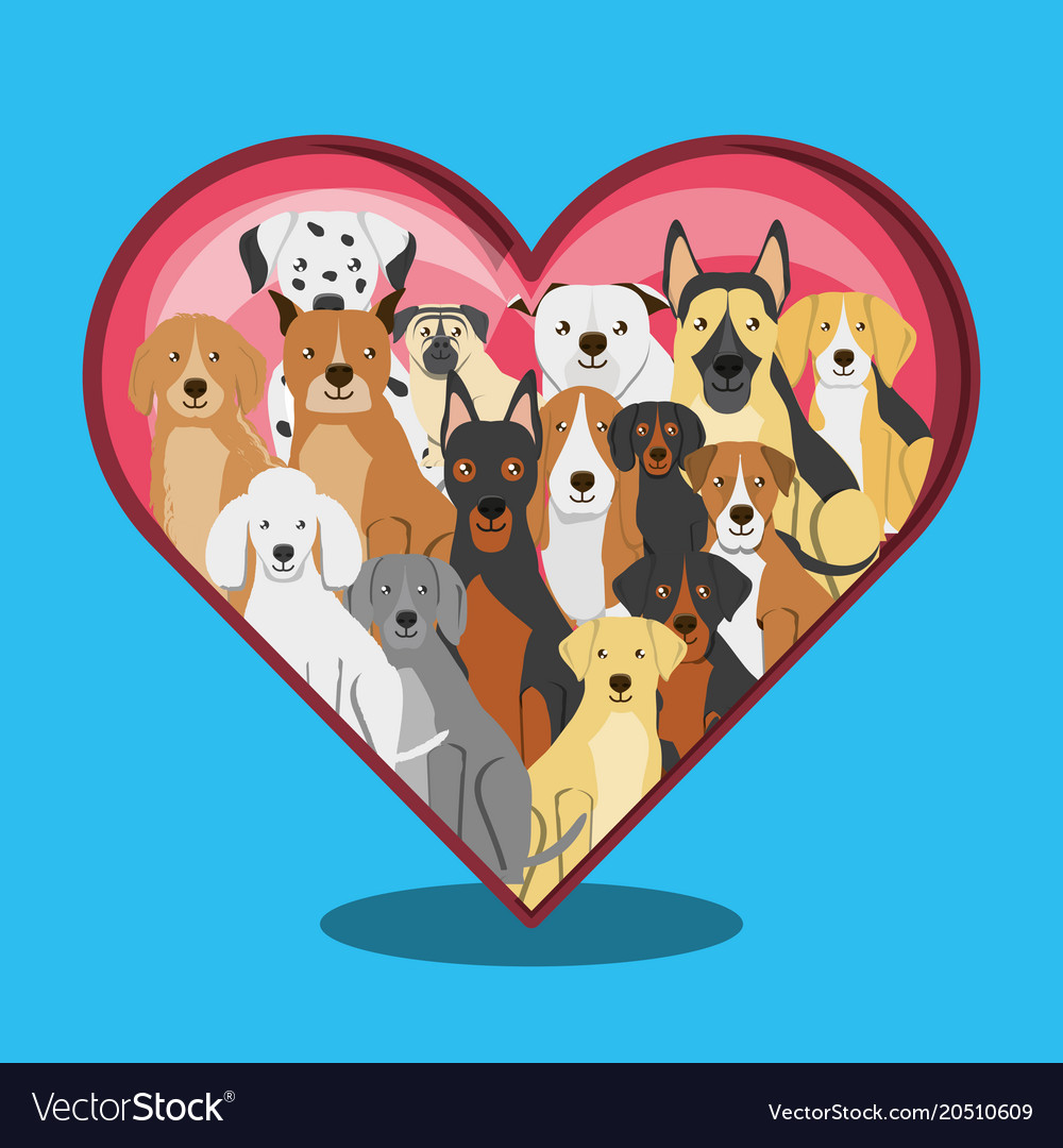 Group of dog breeds with heart