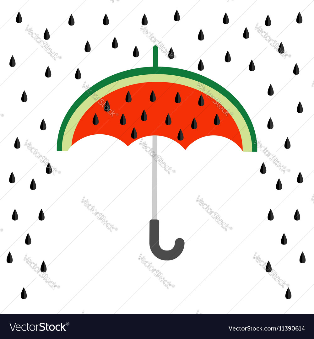 Big watermelon slice cut with seed Umbrella and