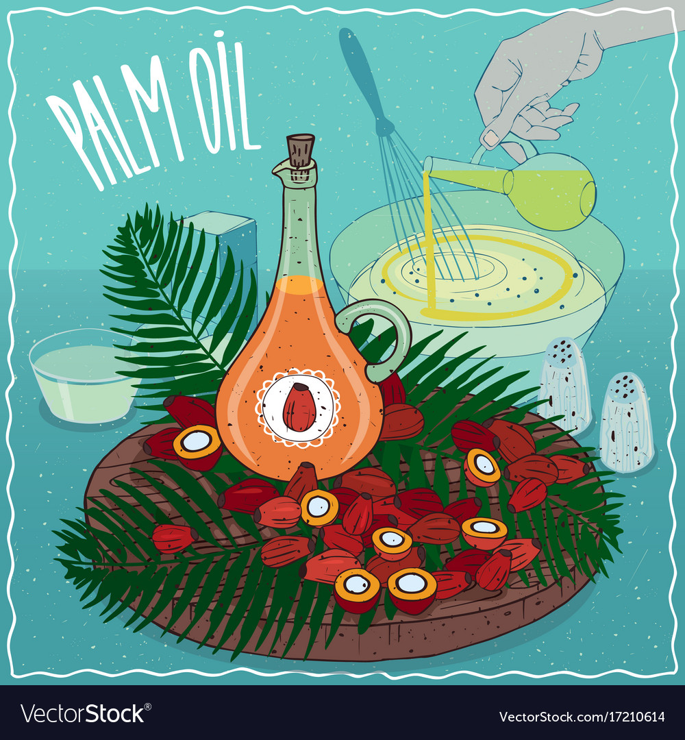 Palm oil used for cooking vector image