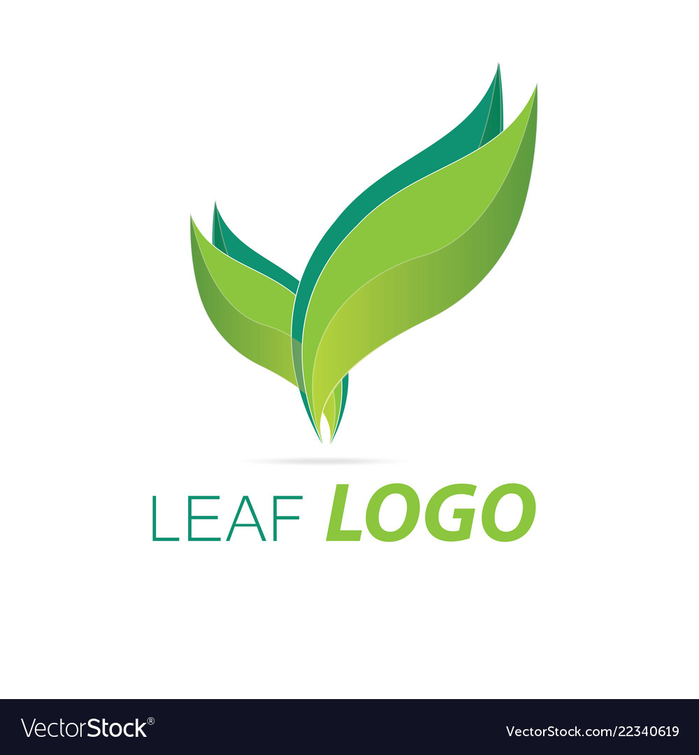 Green leaf logo template healthy fresh leaf