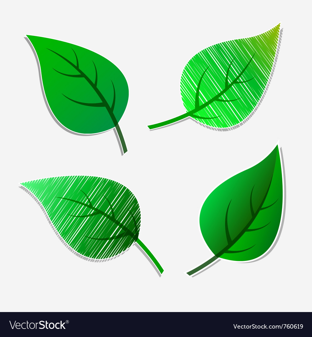 Green leaves stickers vector image