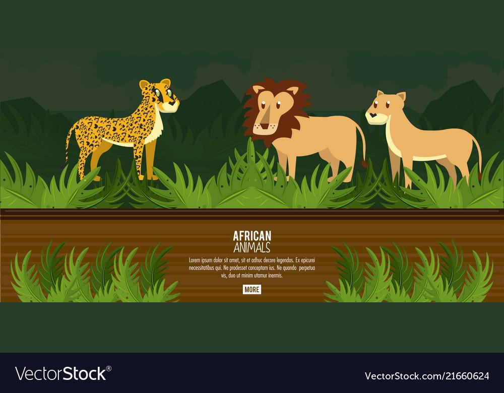 African animals concept