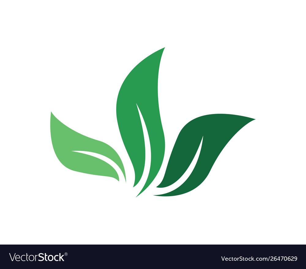 Logos green tree leaf ecology