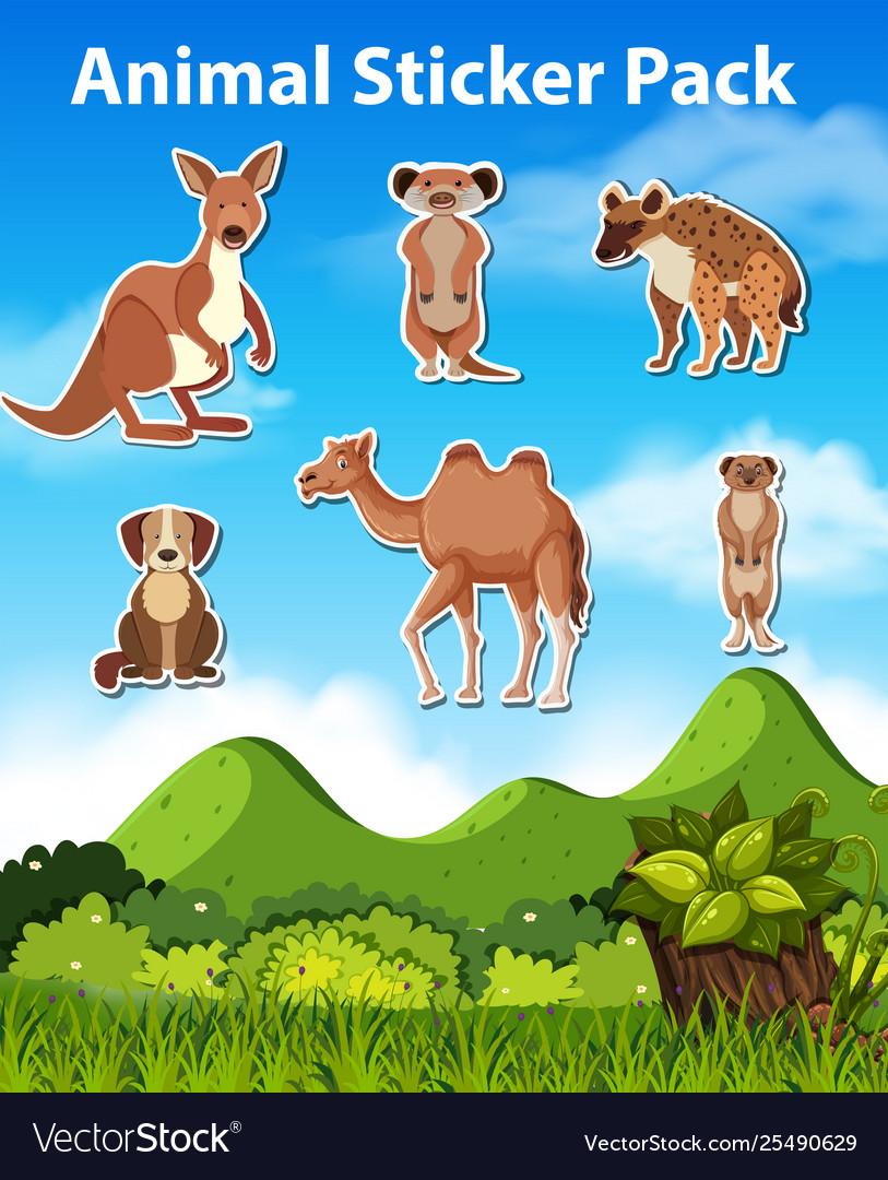 Set wild animal sticker